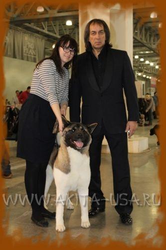 Породы собак от А до Я  zooclubcomua