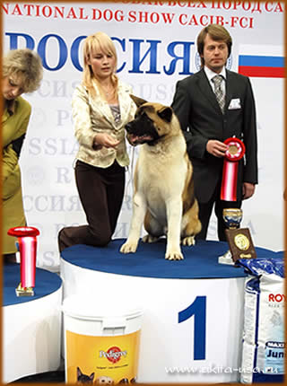 National Dog Show Replay